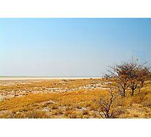 Etosha National Park Photographic Print