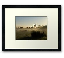 Phoenix rising out of the Mist Framed Print