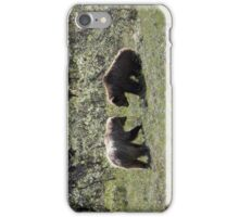 Two grizzly bears iPhone Case/Skin