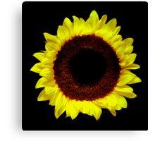 Sunflower Portrait. Canvas Print