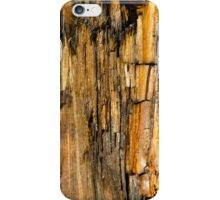 Wet log iPhone Case/Skin