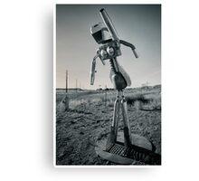 Robot Snapshots Canvas Print