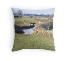 the herons habitat Throw Pillow