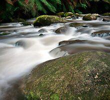 Rocks and Rainfall - Noojee, Victoria, Australia by Sean Farrow