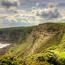 On the Cleveland Way by Tom Gomez