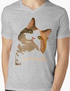 Cattitude - A Cat With Attitude Mens V-Neck T-Shirt
