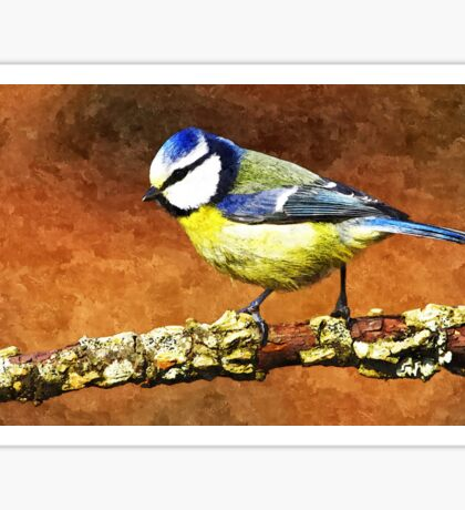 Wild nature - blue tit Sticker