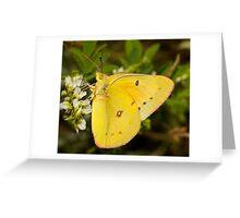 Macro Sulphur Greeting Card