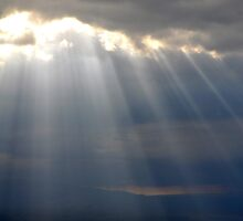 Shining Through by jennifer corker