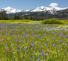 Sawtooth Mountain Wilderness by Jim Stiles