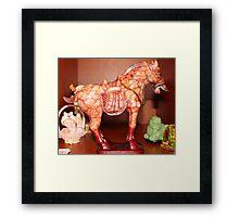 The horse in the shelve Framed Print