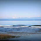 Puget Sound by karolina