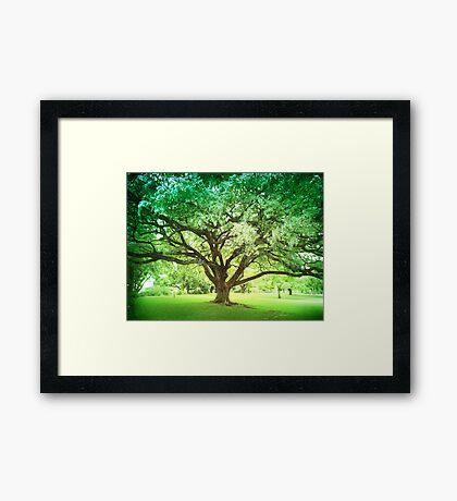 Emerald Retreat Framed Print