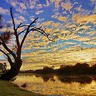 South Esk sunrise - Longford, Tasmania, Australia by PC1134