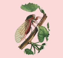 Cicada Illustration Kids Tee