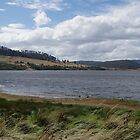 Windy day at Craigbourne Dam by Traffordphotos