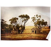 Tin Shed and Mallee Poster