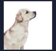 Labrador Puppy 02 Kids Tee