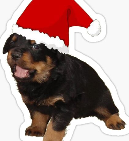 Cute Merry Christmas Puppy In Santa Hat Sticker