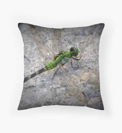 Dragon Friend Throw Pillow