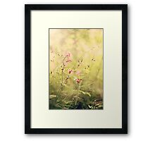 Untamed Beauty Framed Print