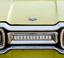 1954 Ford Thunderbird Taillight Emblem by Jill Reger