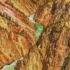 Yellowstone Canyon by Jeff Johannsen