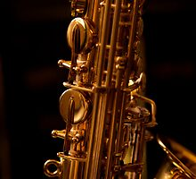 The Alto Saxophone by StantonP