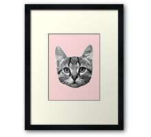 The Army of Catness Framed Print