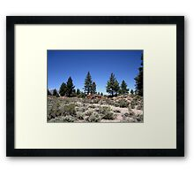 Landscaping Courtesy Of Mother Nature Framed Print