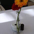 Shaded Flower by bertie01