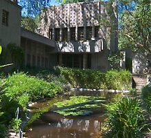 The Millard House by Frank Lloyd Wright by philw