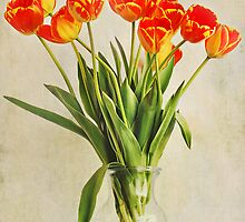 Tiger Tulips by photecstasy
