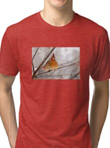 WHAT THE ... ????? Tri-blend T-Shirt
