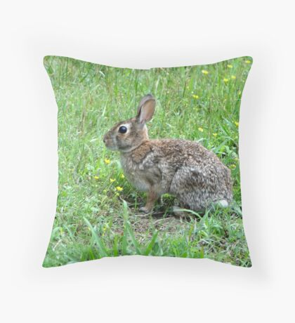 Honey Bunny Throw Pillow