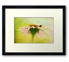 In Perfect Harmony Framed Print