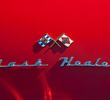 1953 Nash-Healey Roadster Emblem by Jill Reger
