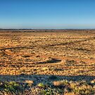 Outback Plains Panorama by Jason Ruth
