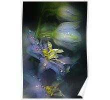 The blue Delphinium Poster