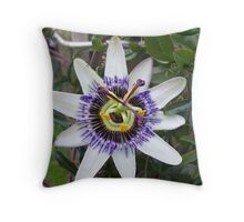 Flower of Passion Throw Pillow