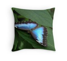 Blue Morpho #2. Throw Pillow
