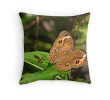Buckeye. Throw Pillow