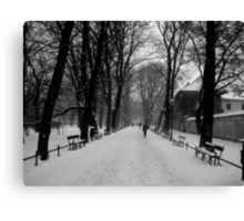 A Layer of Snow Canvas Print