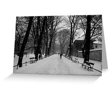 A Layer of Snow Greeting Card