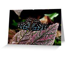 Dark Blue Tiger. Greeting Card