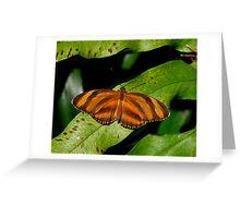 Oak Tiger. Greeting Card
