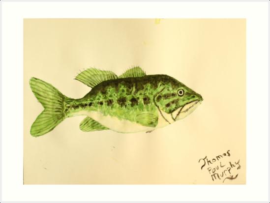 Large Mouth Bass by Thomas Murphy