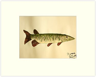 Musky by Thomas Murphy