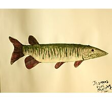 Musky Photographic Print