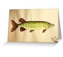 Northern Pike Greeting Card